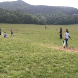 Cricket-Training für Flüchtlinge
