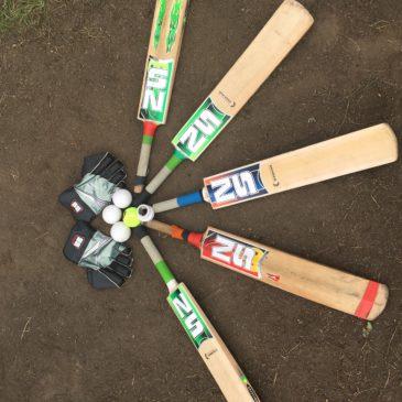Cricket im Sommer 2018